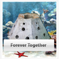 Forever Together Reef